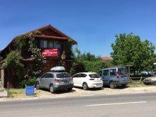 Accommodation Pădureni, Elga's Punk Rock Hostel