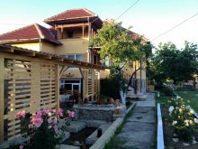 Accommodation Zăsloane, Magnolia Guesthouse