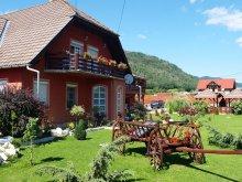 Accommodation Praid, Tichet de vacanță, Ati&Hanna Guesthouse