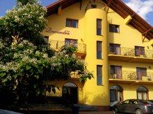 Accommodation Săldăbagiu de Munte, Ruxandra Guesthouse