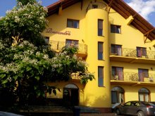 Accommodation Sâniob, Ruxandra Guesthouse