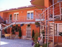 Accommodation Cuptoare (Cornea), Maria Guesthouse