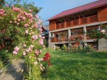 Bed & breakfast Roșoveni, Poiana Soarelui Guesthouse