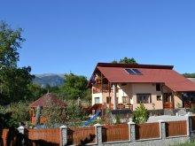 Bed & breakfast Valea Muscelului, Arnota Guesthouse