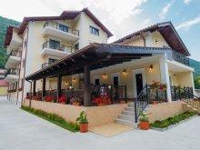 Accommodation Teregova, Tichet de vacanță, Noblesse Guesthouse