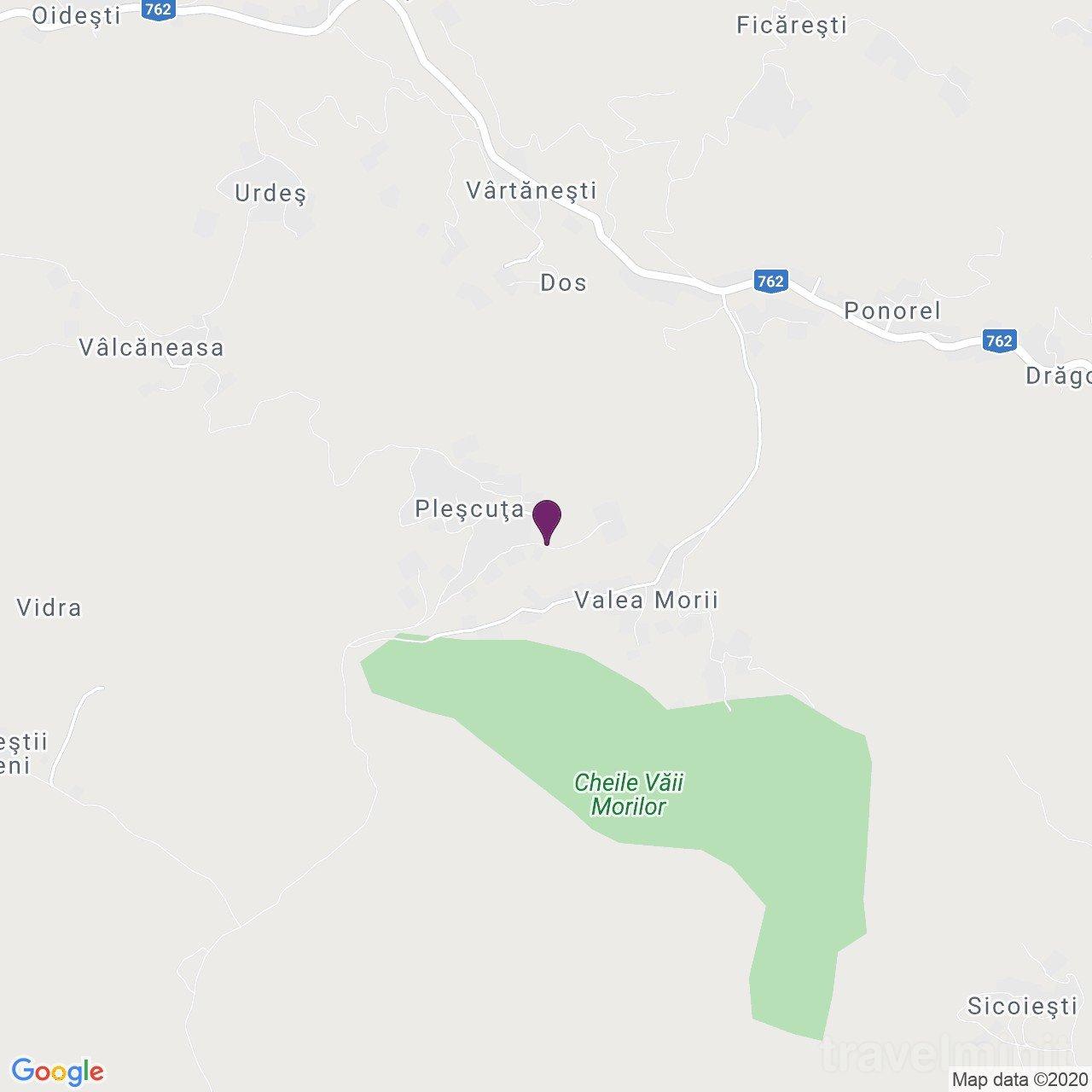 Pensiunea Valea Morii Pleșcuța
