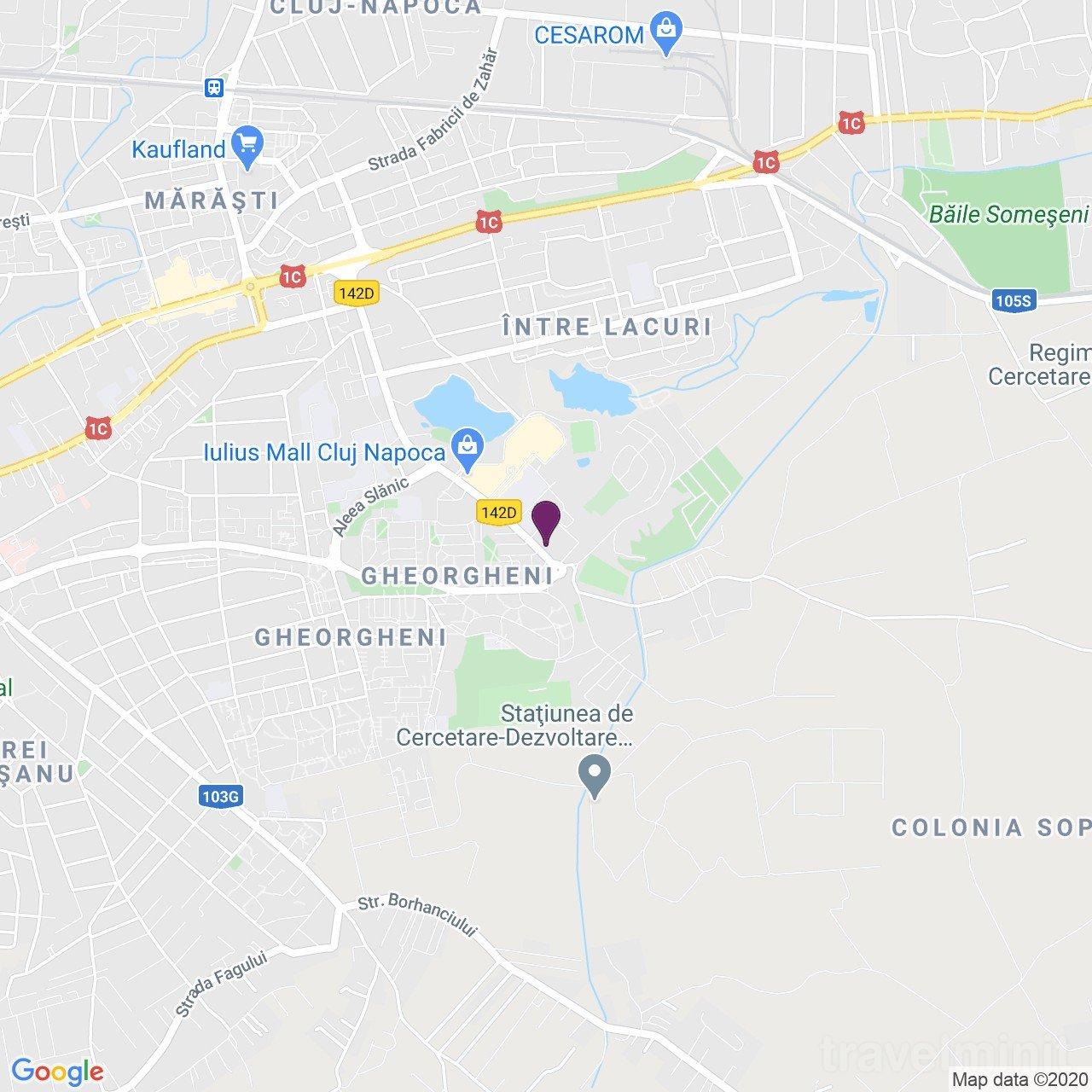 Ares ApartHotel  - 407 Cluj-Napoca